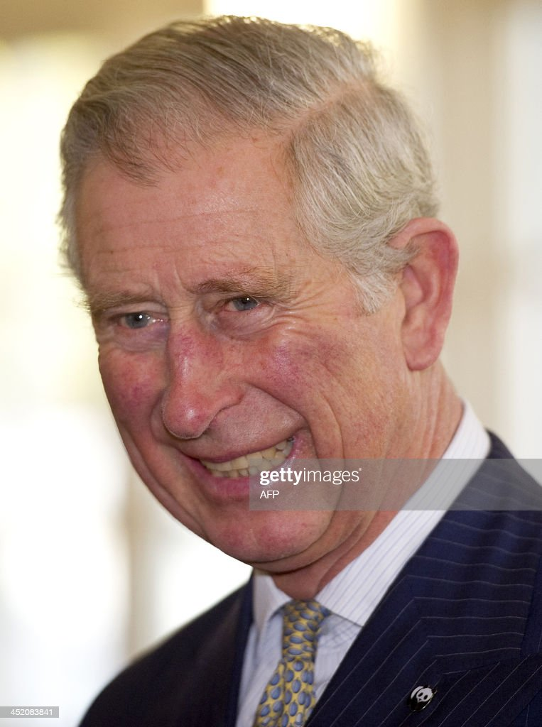 Britain's Prince Charles, Prince of Wales, visits the Zoological Society of London to attend a meeting of 'United for Wildlife' collaboration in London on November 26, 2013. Britain's Prince William, Duke of Cambridge, is President of United for Wildlife, a collaboration of seven of the largest global conservation organisations. AFP PHOTO/POOL/EDDIE MULHOLLAND