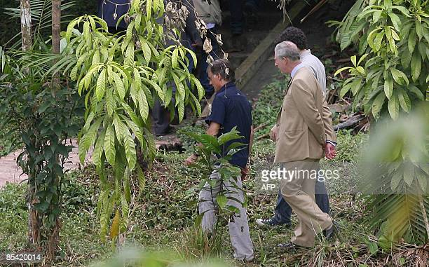 Britain's Prince Charles strolls amid tropical trees at the Amazon PermaCulture project March 13 2009 in Manaus northern Brazil The Royals are in a...
