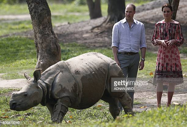Britain's Prince William Duke of Cambridge and Catherine Duchess of Cambridge look at young rhino at the Centre for Wildlife Rehabilitation and...