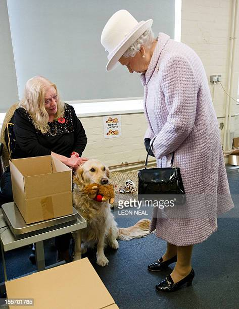 Britain's Queen Elizabeth II looks at Kerrie a guide dog for Sheila Nutbeam an employee at The Poppy Factory that makes the iconic red emblem of the...