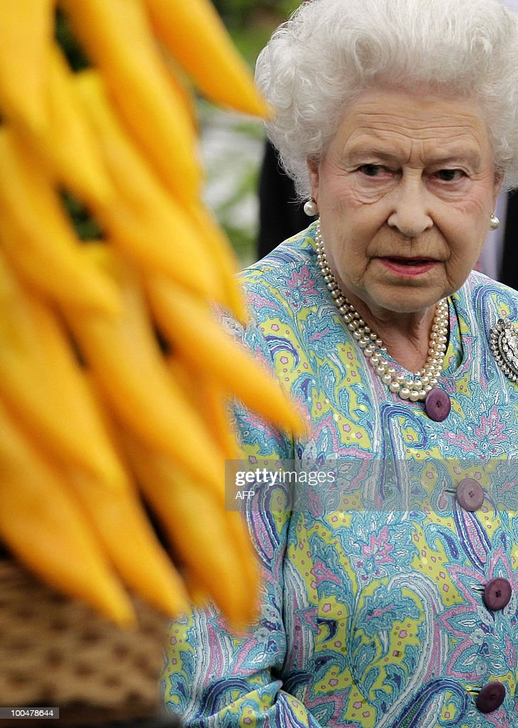 Britain's Queen Elizabeth II visits gardens at the Chelsea Flower Show in London, on May 24, 2010. The show, which has 600 exhibitors, opens to the public on May 25. AFP PHOTO Matt Dunham POOL