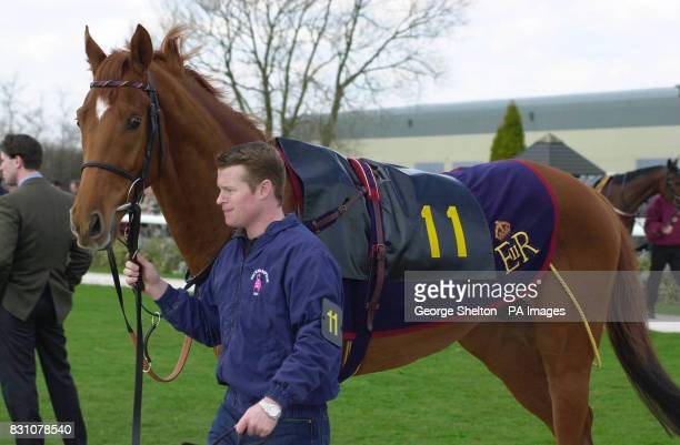 Britain's Queen Elizabeth II's horse Snow Bunting in the Parade Ring before its race at Southwell The horse came in fifth behind Noon Gun in the Tips...