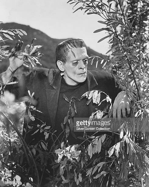 British actor Boris Karloff as Frankenstein's monster in 'Frankenstein' directed by James Whale 1931