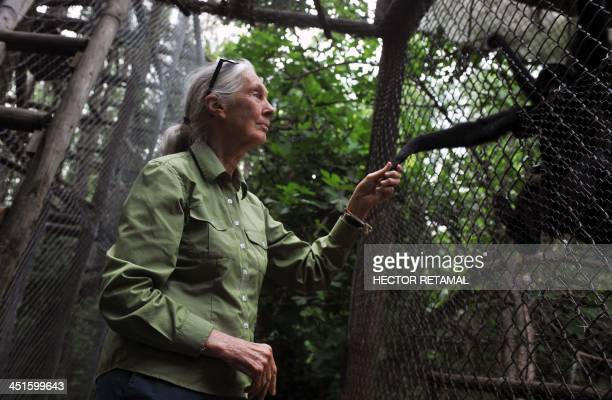 British anthropologist and primatologist Jane Goodall takes the hand of a Spider Monkeyduring her visit to the Rehabilitation Center and Primate...