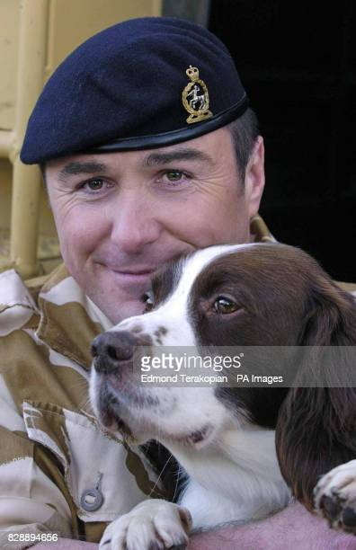 British Army dog Buster with his handler Sgt Danny Morgan after receiving the PDSA Dickin Medal the animal equivalent of the Victoria Cross at...