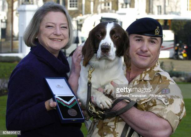 British Army dog Buster with news correspondent Kate Adie and handler Sgt Danny Morgan receiving the PDSA Dickin Medal the animal equivalent of the...