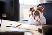 British Bulldog Dressed As Businessman Works At Desk On Computer