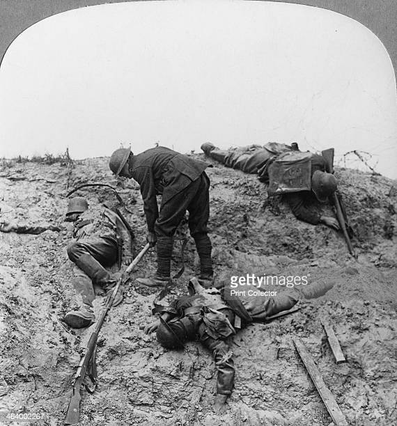 British casualties Ypres salient Belgium World War I 1915 Uncovering men who fell contesting the crater at Zouave Wood Zouave Wood was stormed by the...