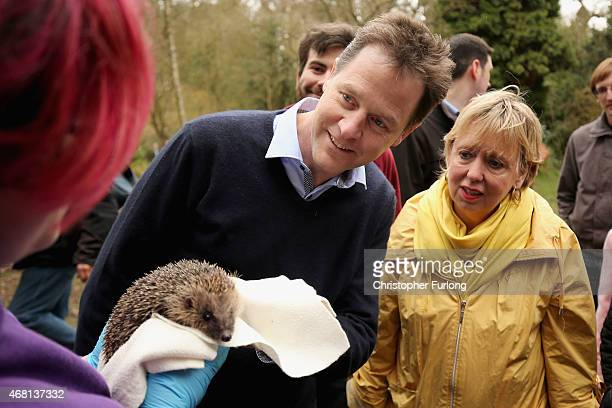 British Deputy Prime Minister and Leader of the Liberal Democrat Party Nick Clegg stands next to his party's MP for Solihull Lorely Burt as they look...