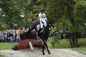 British Harry Meade rides Wild One rides on August 30 2014 during the timetable crosscountry test of the 2014 FEI World Equestrian Games at the Haras...
