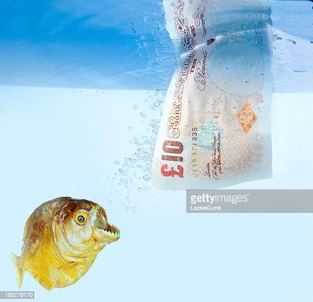 Britisches Pfund