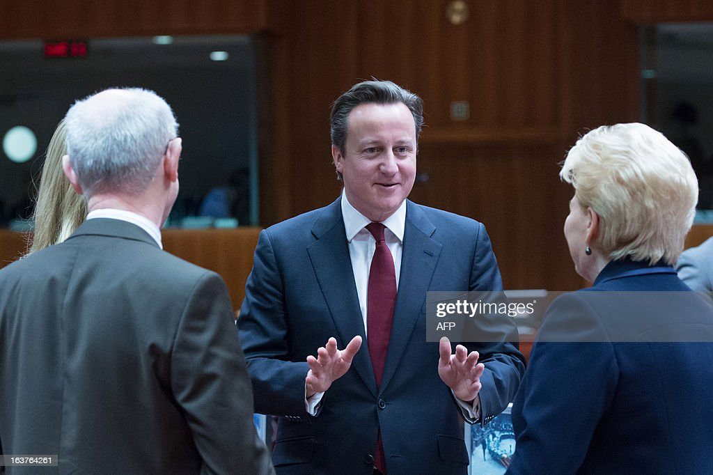 British Prime Minister David Cameron (C) talks with Lithuanian President Dalia Grybauskaite (R) and European Council President Herman Van Rompuy prior to a roundtable meeting at the EU Headquarters on March 15, 2013 in Brussels, on the second day of a two-day European Union leaders summit. EU leaders hold a second and final day of summit talks from with attention turning to relations with Russia.