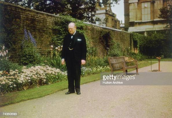 British Prime Minister Sir Winston Churchill in the garden at 10 Downing Street London circa 1943