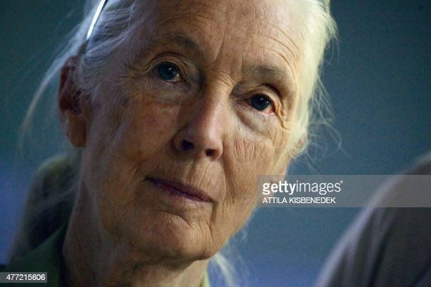 British researcher environmental activist and UN peace ambassador Jane Goodall is pictured during the presentation of the Hungarian version of her...