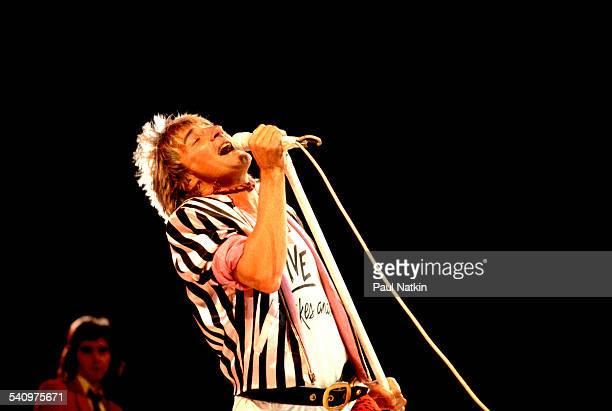 British singer Rod Stewart performs onstage at the Rosemont Horizon Rosemont Illinois January 12 1982