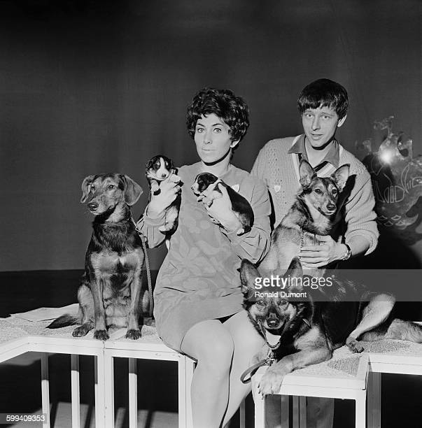 British television presenters Valerie Singleton and John Noakes with dogs spanning four generations who are due to appear on the children's TV show...