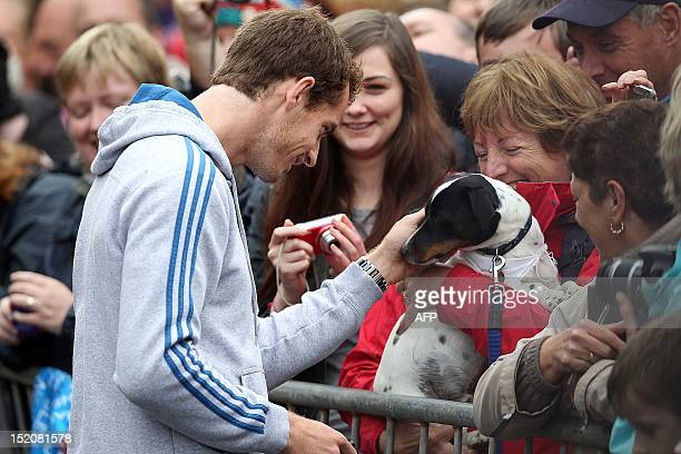 British tennis player Andy Murray pets a dog as he meets with fans in the centre of Dunblane Scotland on September 16 following his victory in the US...