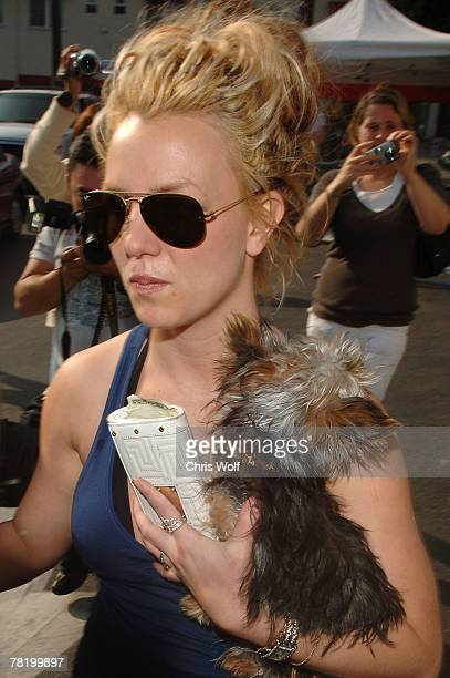 Britney Spears leaving Petco on November 17 2007 in Los Angeles California
