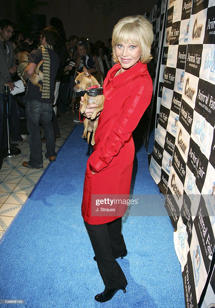 "7th Annual ""Paws for Style"" Celebrity Pet Fashion Benefiting Animal Medical"