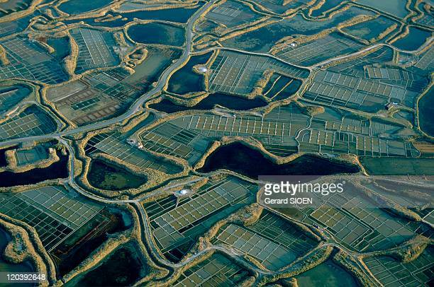 Brittany plural and singular in Guerande France Guerande rectangles and winding bends of salt marshes and their canals