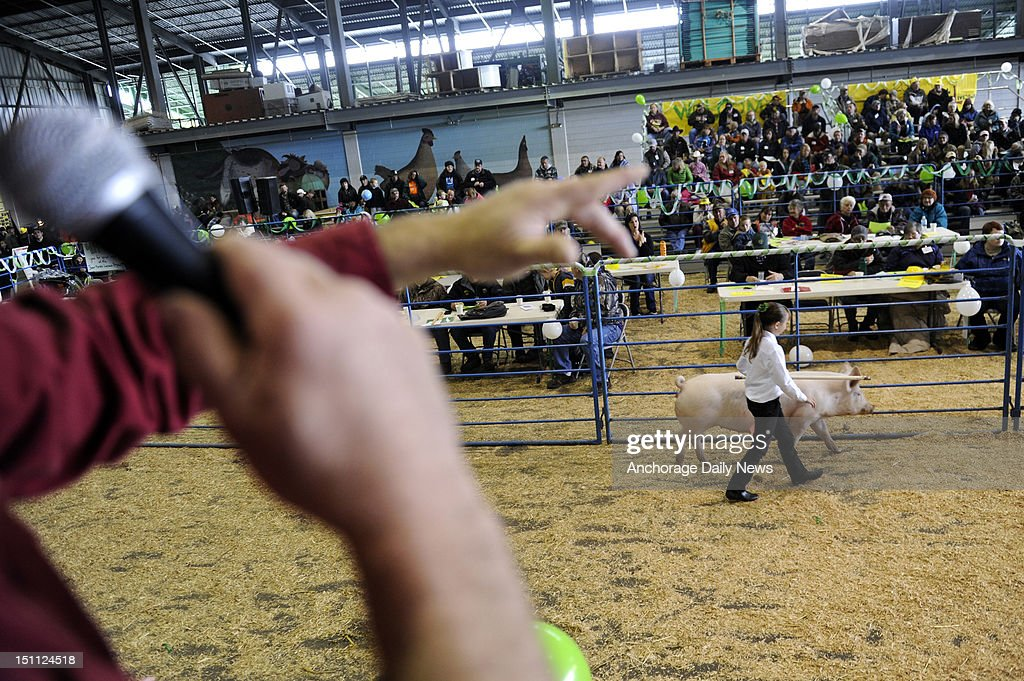 Brittyn Werner of Palmer shows her pig Jojo during the 4H Livestock Auction at the Alaska State Fair in Palmer, Alaska, Saturday, September 1, 2012. Auctioneer Mike Dewan calls out the bids at left.