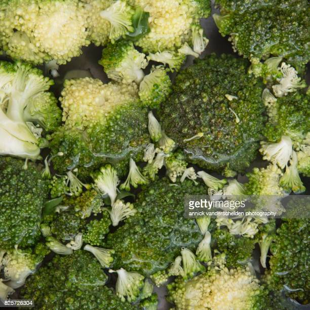Broccoli in water.