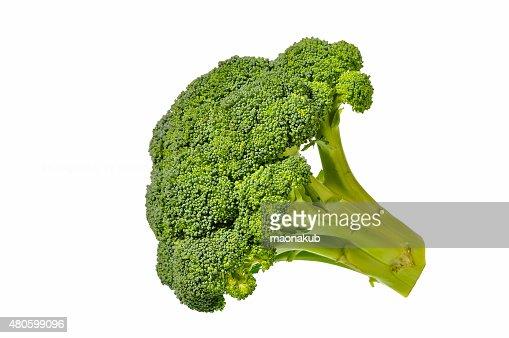 Broccoli isolated : Stock Photo