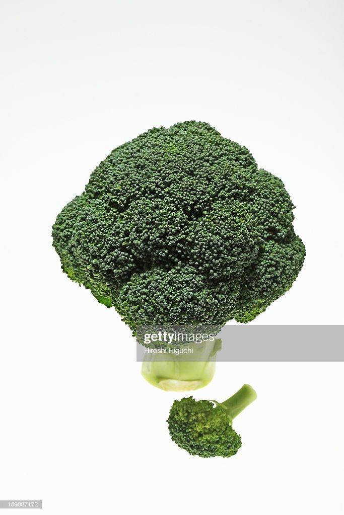Broccoli : Stock Photo