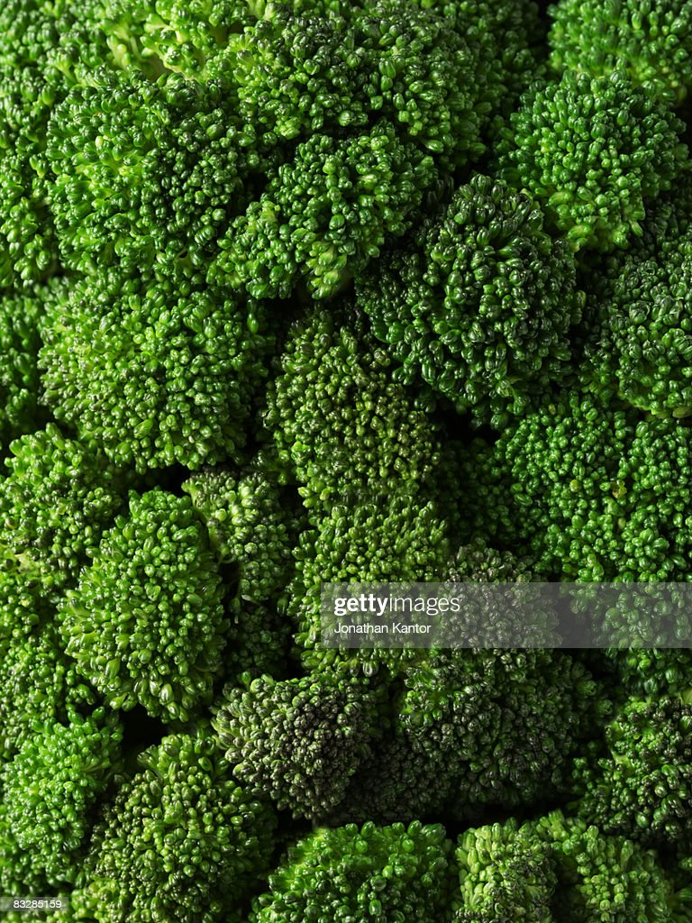 Broccolli Closeup : Stock Photo