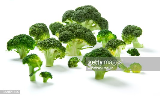 Brocoli : Stock Photo
