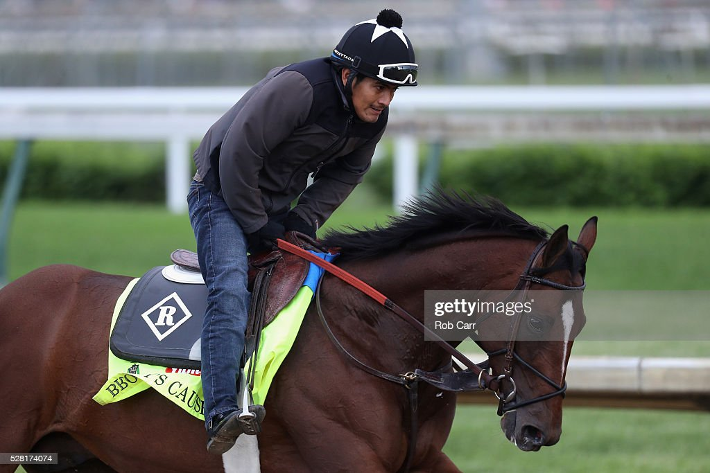 Brody's Cause trains on the track for the Kentucky Derby at Churchill Downs on May 04, 2016 in Louisville, Kentucky.