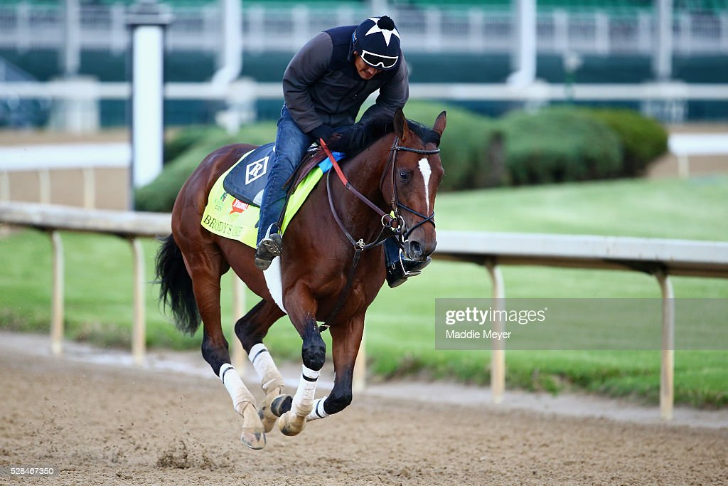Brody's Cause trains on the track for the Kentucky Derby at Churchill Downs on May 05, 2016 in Louisville, Kentucky.