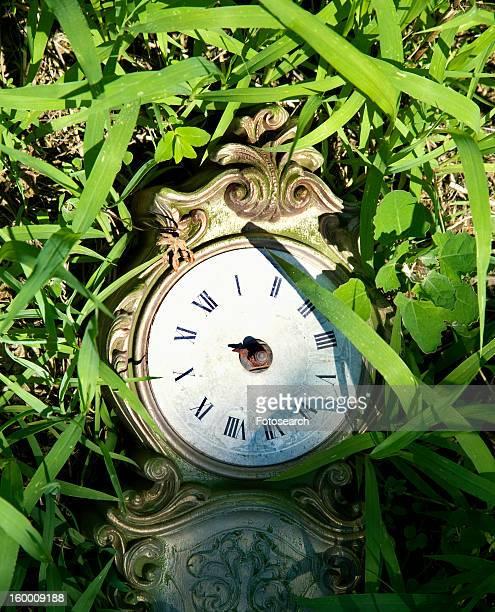 Broken clock lying in grass.