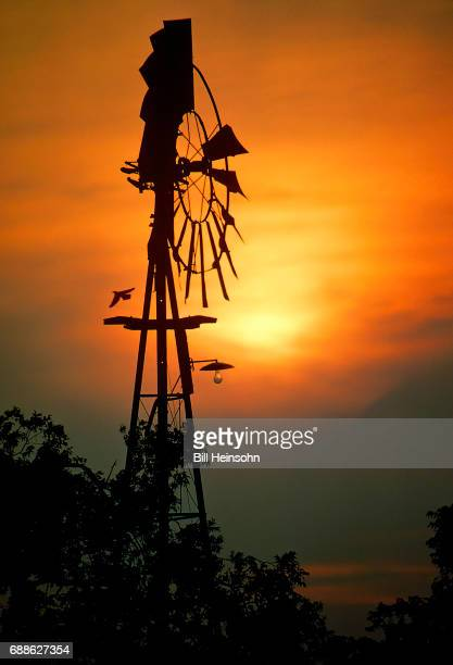 Broken down country windmill at sunset