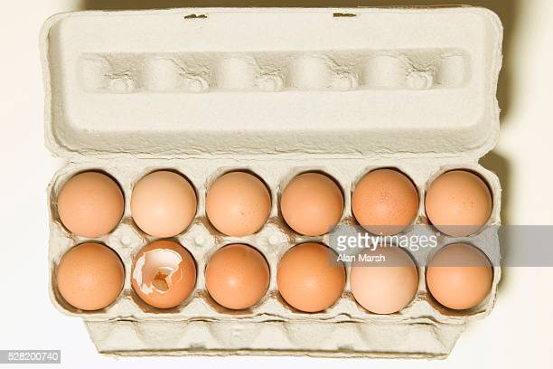 Broken Egg Among Dozen in Carton
