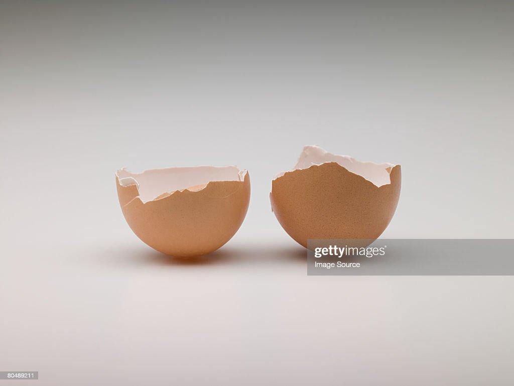 Broken egg : Stock Photo