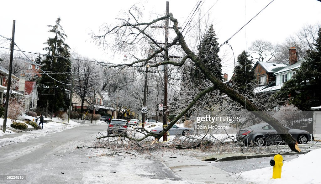 TORONTO, ON- DECEMBER 23 - A broken tree leans precariously over the road as Two days after the big ice storm downed trees are still littering the High Park area and hydro is still out in many homes at in Toronto, December 23, 2013.