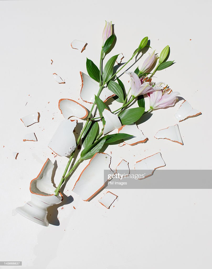 Broken Vase with Pink Lilies : Stock Photo