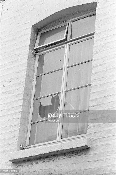 Broken window by police to gain entry at mews home at the rear in Eaton Row where Lord Lucan lived Richard John Bingham 7th Earl of Lucan popularly...