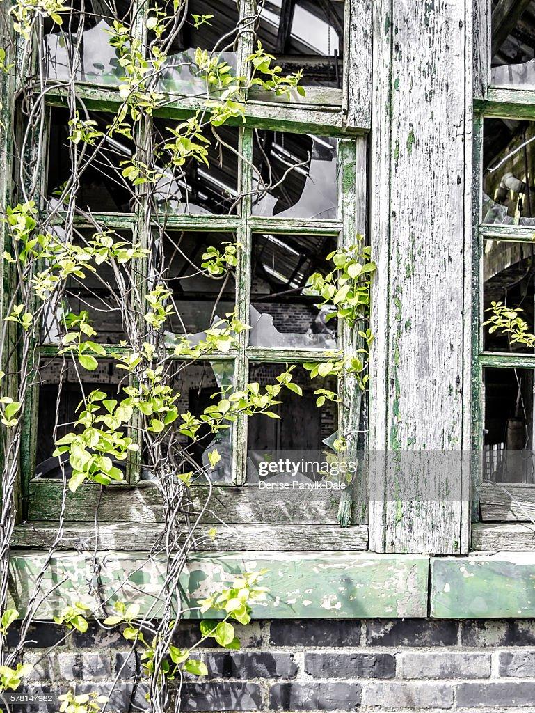 Broken windows on abandoned building