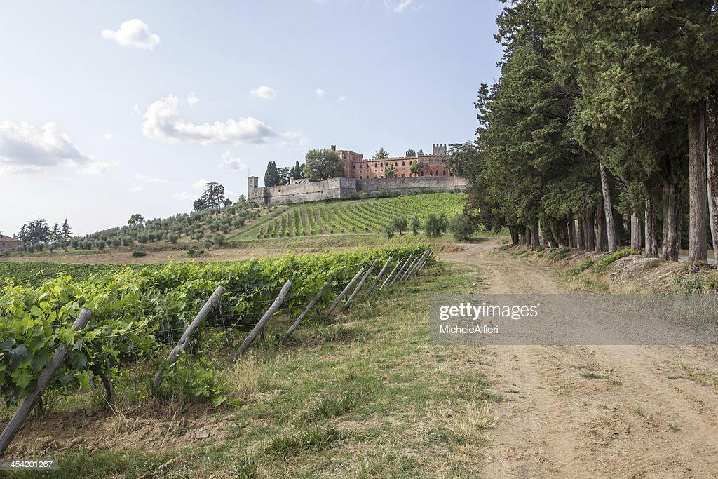 Castelo de Brolio e a proximidade vinhas : Foto de stock