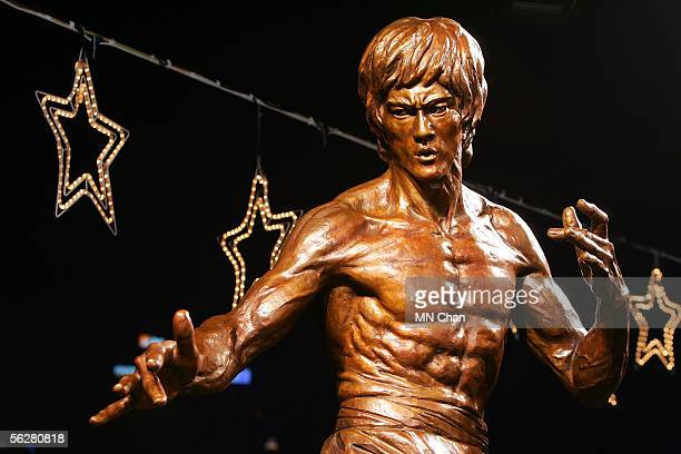A bronze statue of late martial arts legend and movie superstar Bruce Lee is seen after an unveiling ceremony at the Avenue of Stars on November 27...