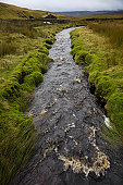 Brook in Yorkshire Dales, Yorkshire, England