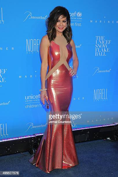 Brooke BurkeCharvet attends the 11th Annual UNICEF Snowflake Ball Honoring Orlando Bloom Mindy Grossman And Edward G Lloyd at Cipriani Wall Street on...