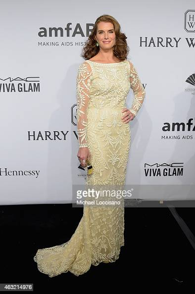 Brooke Shields attends the 2015 amfAR New York Gala at Cipriani Wall Street on February 11 2015 in New York City