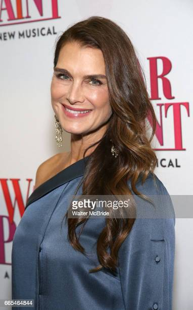 Brooke Shields attends the Broadway opening night performance of 'War Paint' at the Nederlander Theatre on April 6 2017 in New York City