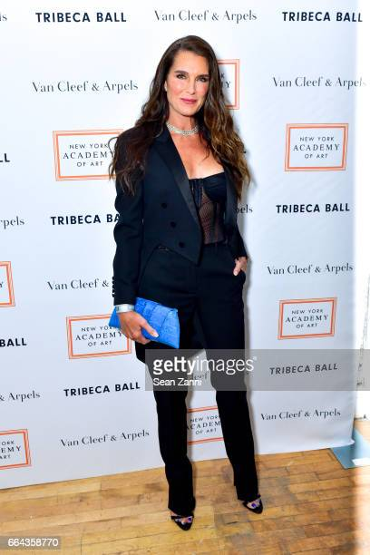 Brooke Shields attends the New York Academy of Art Tribeca Ball Honoring Will Cotton at New York Academy of Art on April 3 2017 in New York City