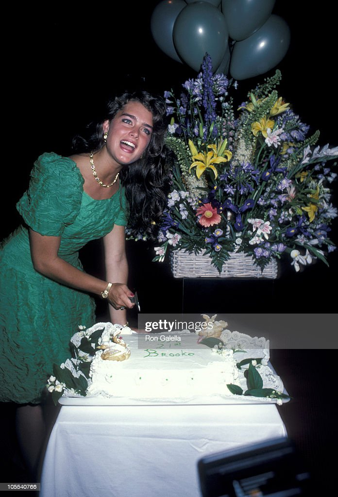 Brooke Shields during Brooke Shield's 21st Birthday Party - May 31, 1986 at Nishi Naho in New York City, New York, United States.