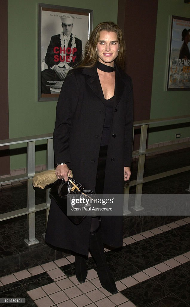 Brooke Shields during Screening of 'Chop Suey' Directed by Bruce Weber at Laemmle Fairfax Theatre in Los Angeles, California, United States.