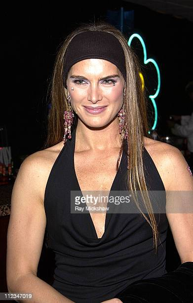 Brooke Shields during The 9th Annual Race to Erase MS CoChaired by Nancy Davis Tommy HilfigerSilent Auction at The Century Plaza Hotel in Century...